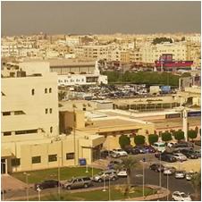 Dammam, Saudi Arabia - Logistics Plus