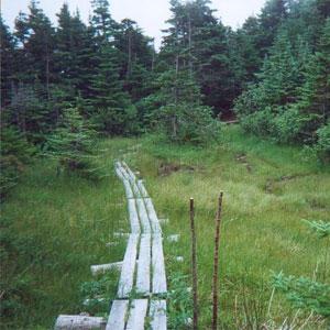 Off-the-Beaten-Path