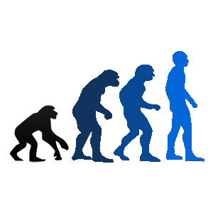 Darwin-Evolution