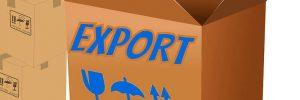 Export-Box-Banner